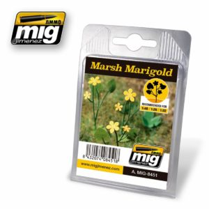 AMMO-Marsh-Marigold---Sumpfdotterblume_0 - bigpandav.de